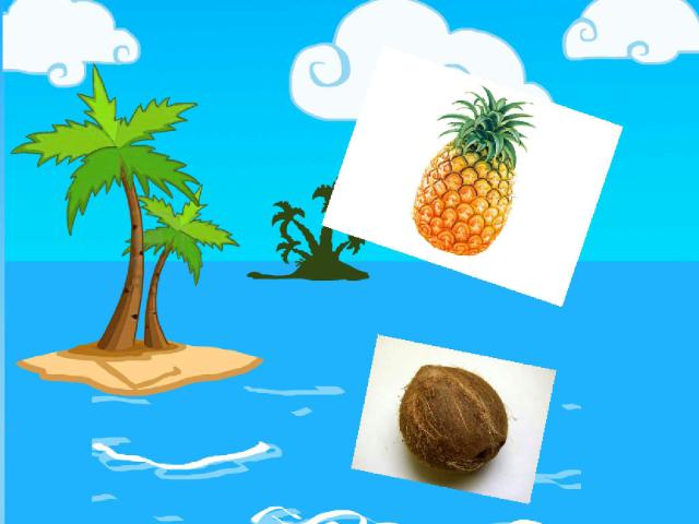 פירות טרופיים by rachel atzipri