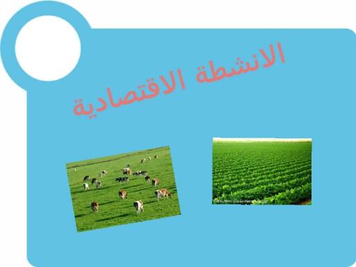 الانشطة الاقتصادية by fatmah ahmed