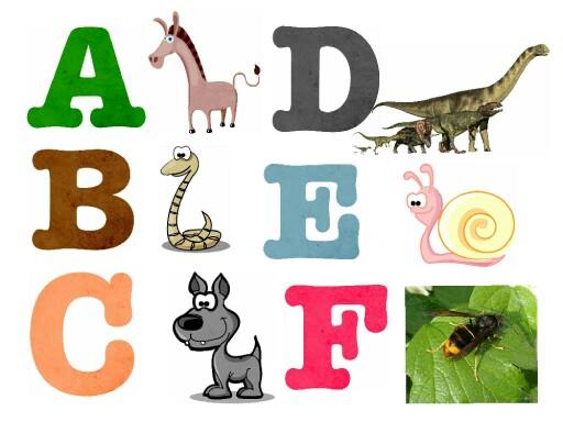 Alphabet des animaux by Classe maternelle Isabelle Ecole