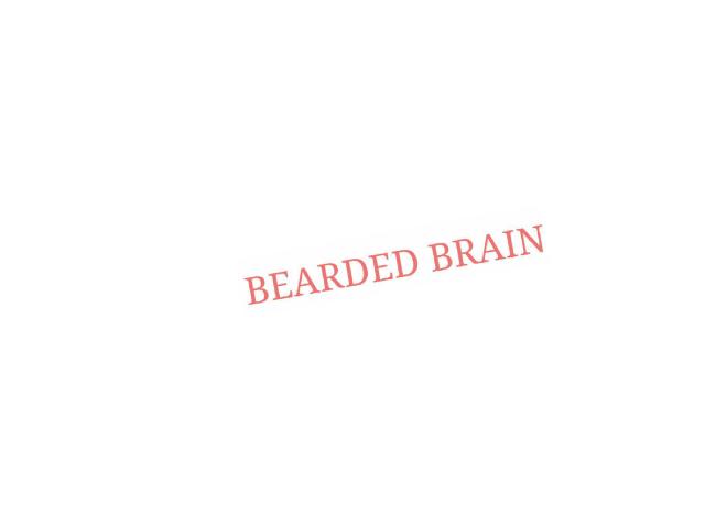 Bearded brain by Danika Burney
