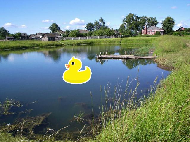 duckey g by Kari Isenhour