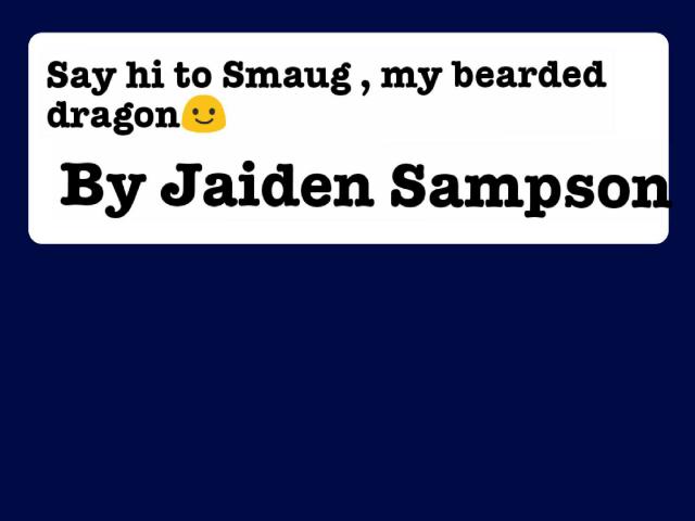 Say hi to Smaug,my bearded dragon☺ by Jaiden Sampson