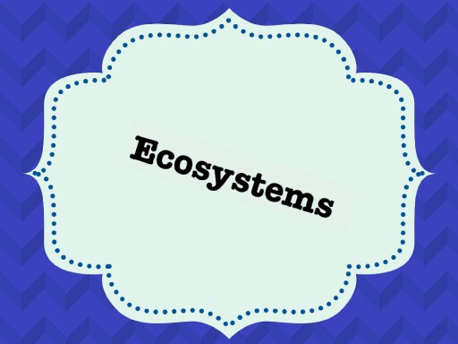 Ecosystems   by Abby Berven