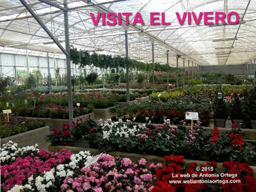 VISITA EL VIVERO by Antonia Ortega López