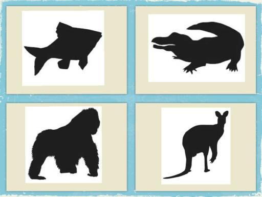 Activité animaux by Gregory Gouzil