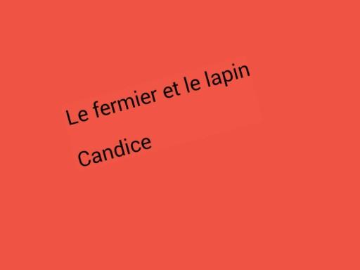 SRA Le fermier et le lapin 2 by Serge Salvat