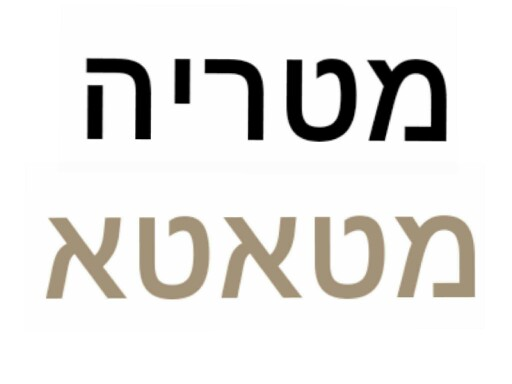 Game 11 by ורד ברדין