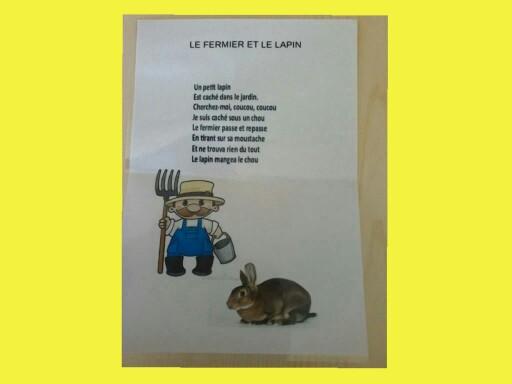 SRA Comptine fermier 2 by Serge Salvat