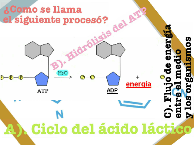 Materia  by Lili Núñez Rodriguez
