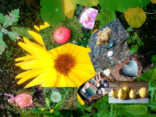 Merveilles de la nature by Classe maternelle Isabelle Ecole