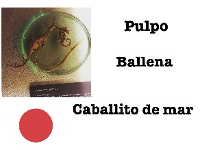 Game 4 by Sandra Ocampo Lagoa
