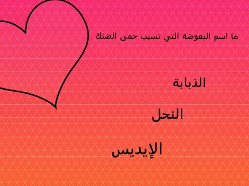 سؤال واجابه  by rahaf Eliyan