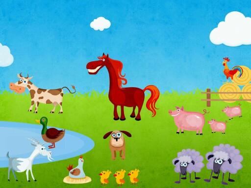 Állatok by vera aloe