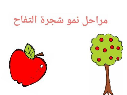 جنى الحربي by Amal Amal