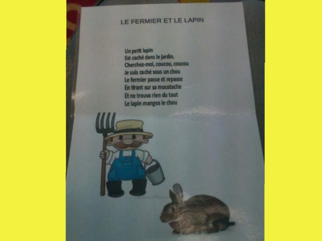 SRA Comptine le fermier  3  by Serge Salvat