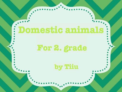 Domestic animals by Pärnu Mai Kool