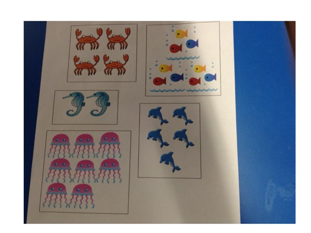 Fernvale Mrs Fisher Maths by Fernvale  Primary Primary