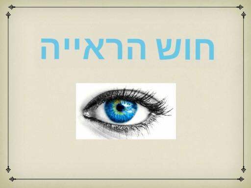 חוש הראיה by קרן ע