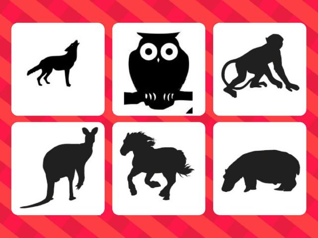 Animals test by Gregory Gouzil