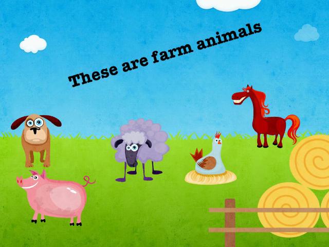 farm animals by Angela romo