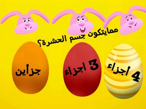 المفصليات by Saleha Alshehri