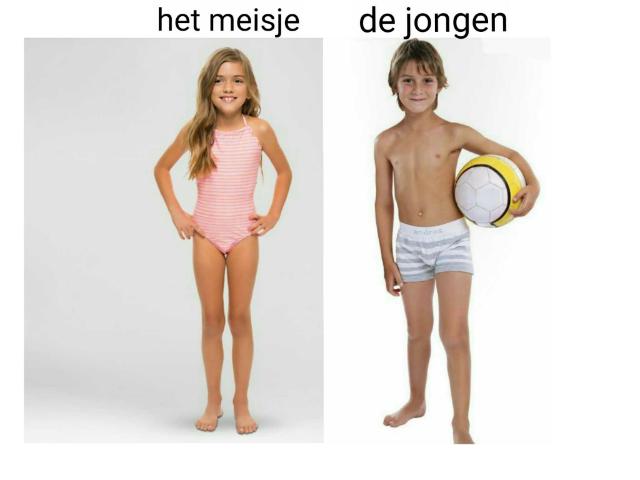 het lichaam by Lotte Oude Middendorp