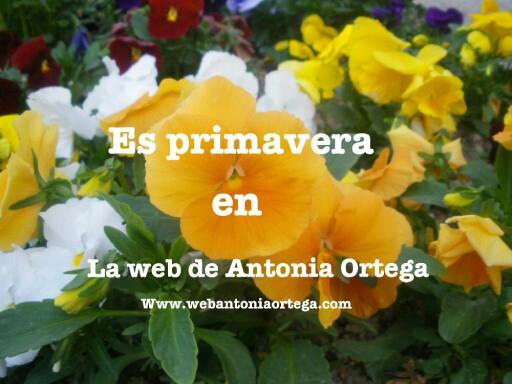 Flores p by Antonia Ortega López