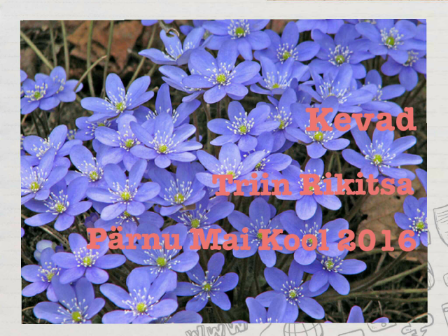 Kevade tunnused by Tiiu Vendel