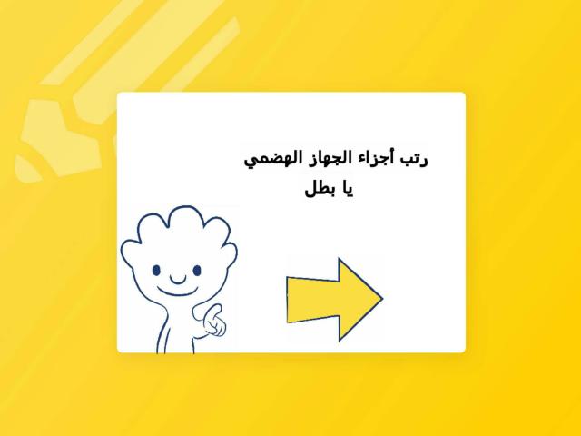 الجهاز الهضمي  by amjaad mohammed
