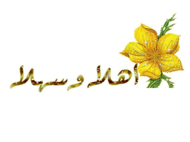 اختبر معلوماتي87 by وصال العطا
