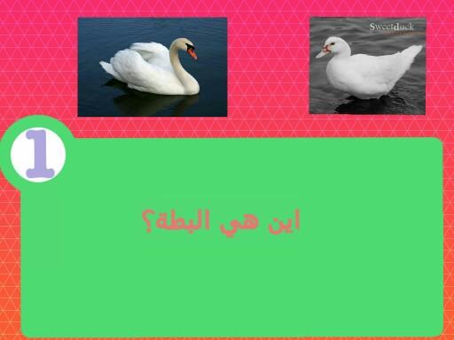 ااسم اللعبة هو اتعلم by Fatima Musawy