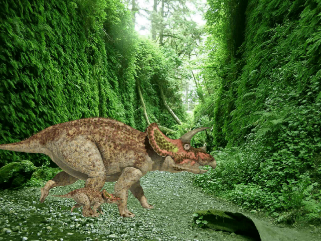 this is a game where the Triceratops lost her son. by saya brown