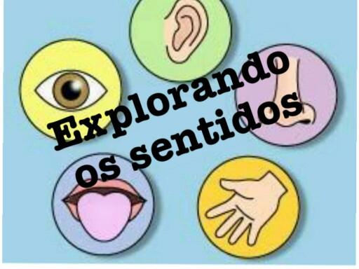 Um jogo educativo que auxilia no aprendizado dos cinco sentidos. Para crianças a partir dos sete anos de idade. by Rozane Helena Magalhães de Oliveira