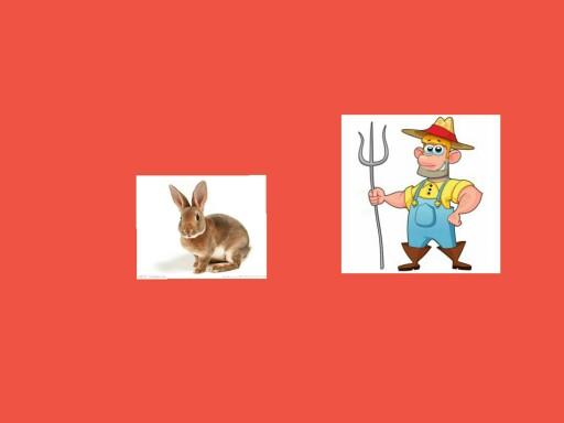 SRA comptine le fermier et le lapin by Serge Salvat