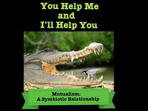I'll Help You, You Help me by Tuffy muggins