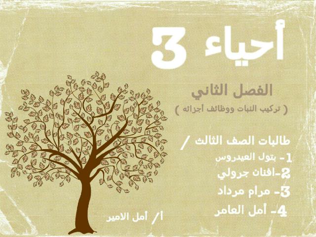 أحياء 3 by Atheer Alqurashi