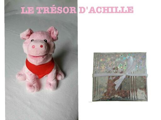 Le trésor d'Achille  by Monique Ducroux