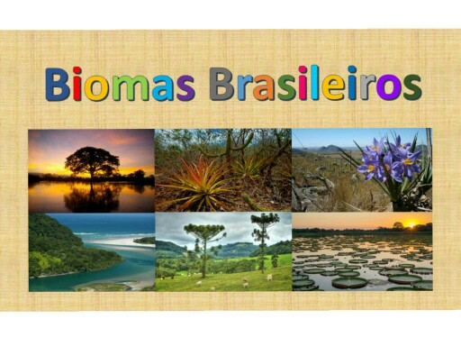 Biomas Brasileiros 3A/B by CSA Fund I