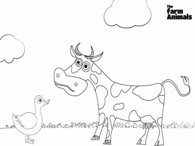 the animals on the farm by Chloe Hanson