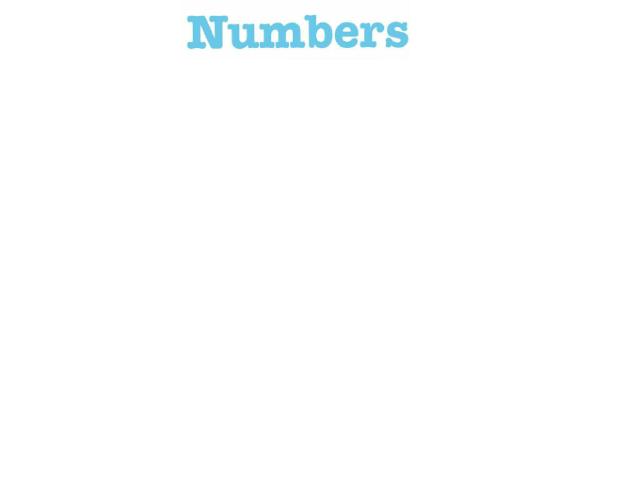 NUMBERS! by Maegan Shumaker