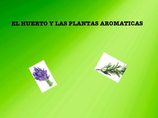 EL HUERTO Y LAS PLANTAS AROMÁTICAS by pilitoninas primitivas