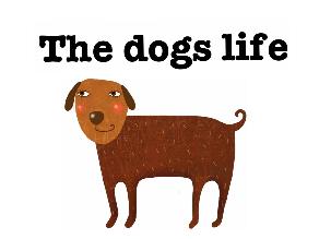 dogs life  by Ila Lassel