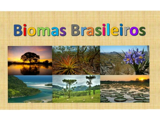 Biomas Brasileiros 3C/D by CSA Fund I