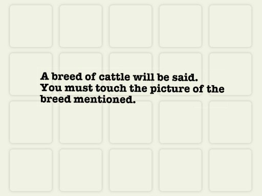 Cattle a by Sarah Knutson