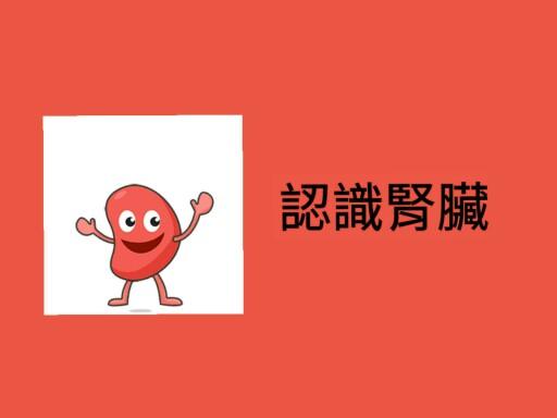 腎臟 by 李 顆七七