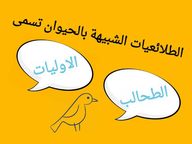 الطلائعي by هديل نورة