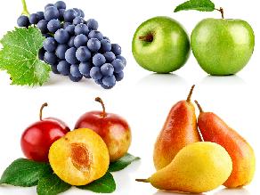 fruit and veggie fun by Grace Garrett
