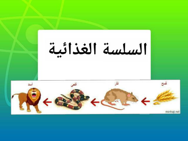 السلسة الغذائية by Manar Shâmsìéh