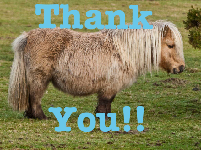 A lonely ponie thank you by george dale
