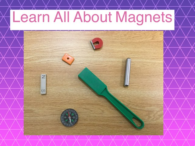 Anika's Awesome Magnet Game by Frances Chapin